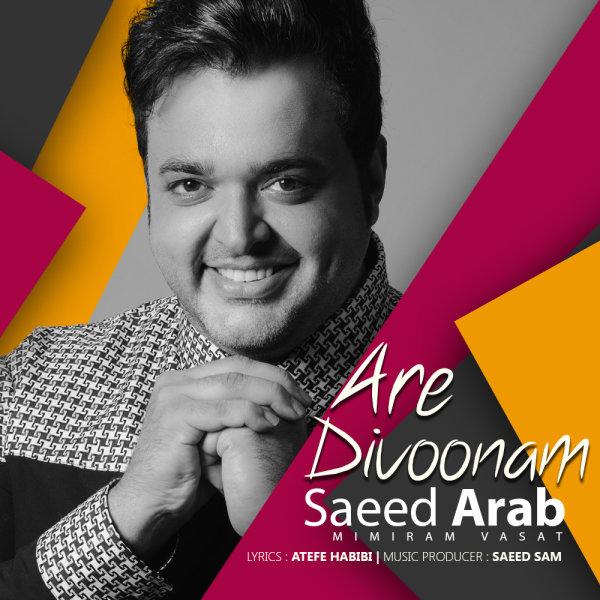 دانلود آهنگ جدید سعید عرب به نام آره دیوونم