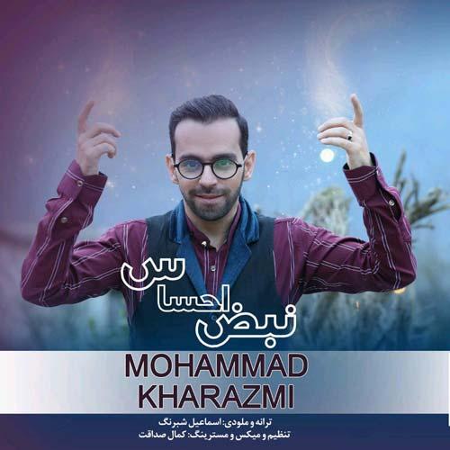 دانلود آهنگ جدید محمد خوارزمی به نام نبض احساس