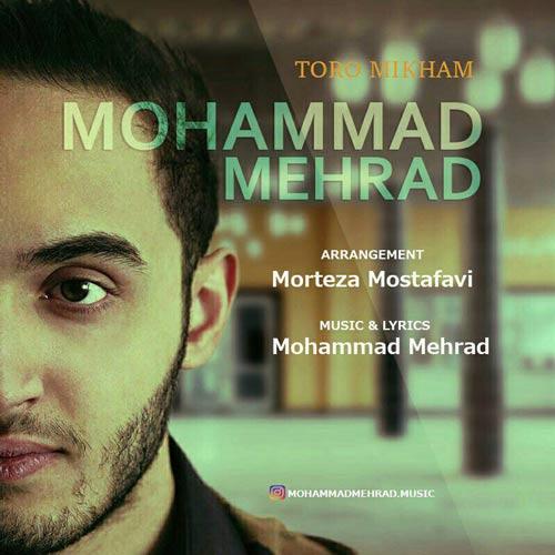دانلود آهنگ جدید محمد مهراد به نام تورو میخوام
