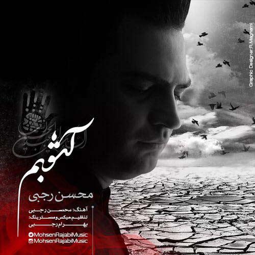 دانلود آهنگ جدید محسن رجبی به نام آشوبم